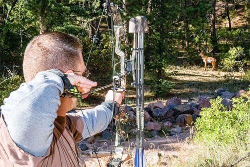 Man Aiming Bow At Deer