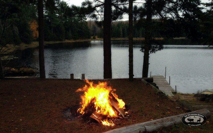 Campfire Along the Shore