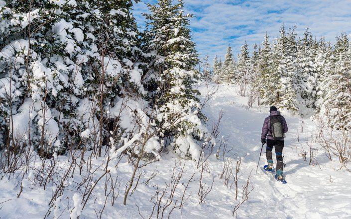 Winter Snowshoeing Upper Michigan